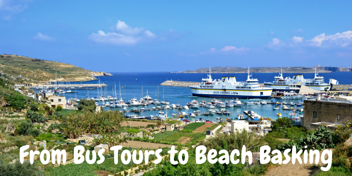 From Bus Tours to Beach Basking